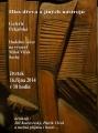 Hlas dřeva a jiných nástrojů